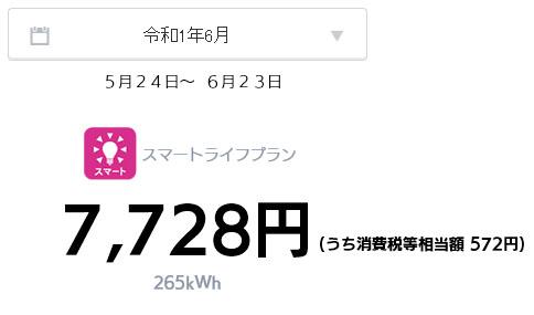 オール電化 電気代 太陽光発電 売電金額 2019年 6月