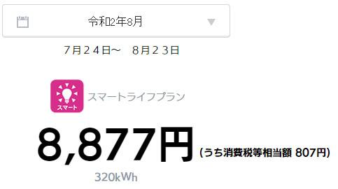 オール電化 電気代 太陽光発電 売電金額 2020年 8月
