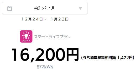 オール電化 電気代 2021年 1月
